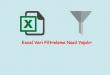 Excel Veri Filtreleme Nasıl Yapılır