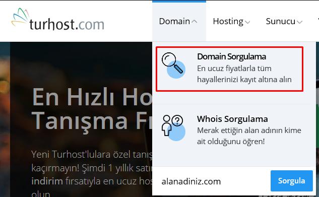 Domain Sorugulama