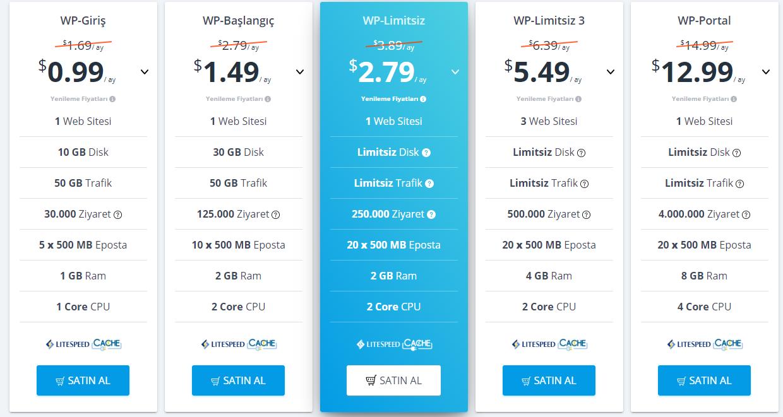 web sitesi hosting