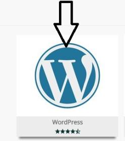 wordpress kurulumu cpanel